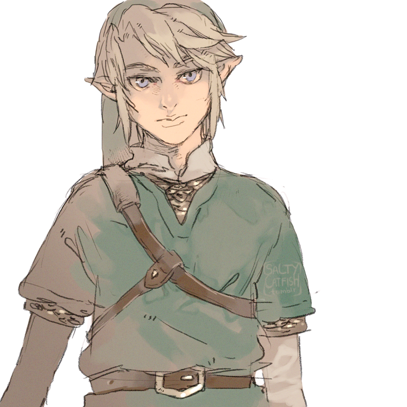LoZ: Sketch by saltycatfish