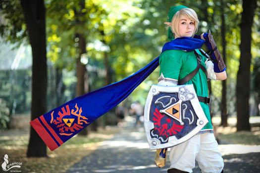 Hyrule Warriors Link