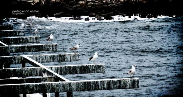 protegiendo el mar by Hallaserke
