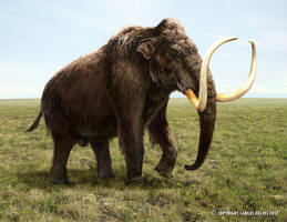 Woolly Mammoth by Kaek