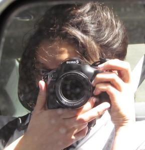 SimpleBend's Profile Picture