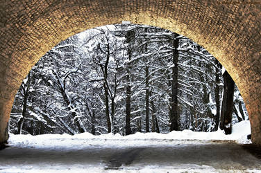 nature in an arch by Lyutik966