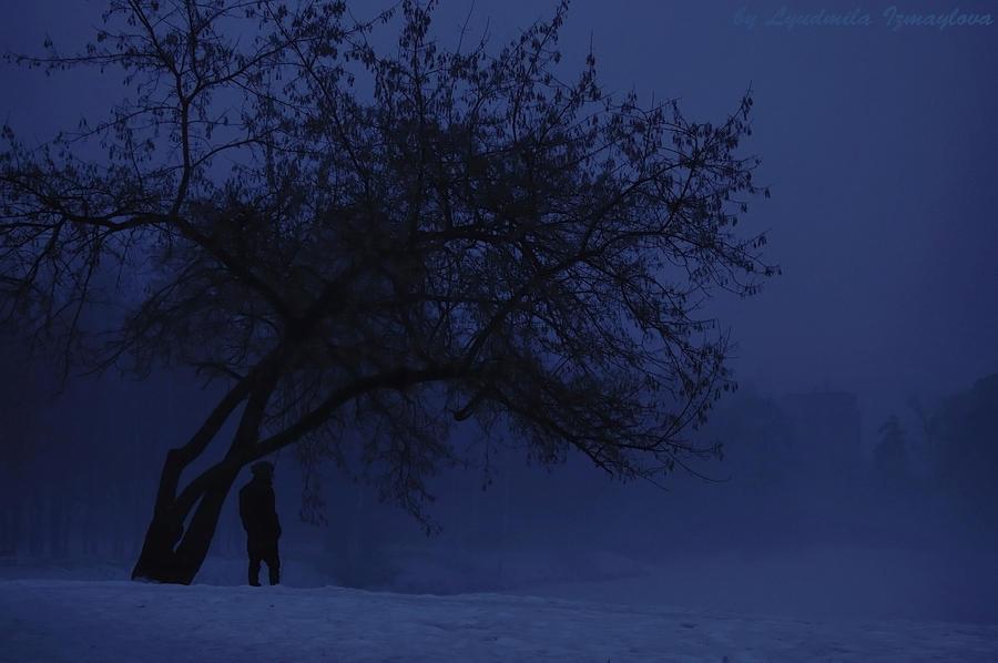 foggy park by Lyutik966