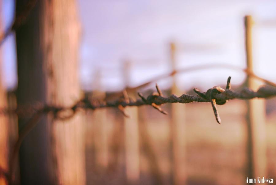 Majdanek by evescesann