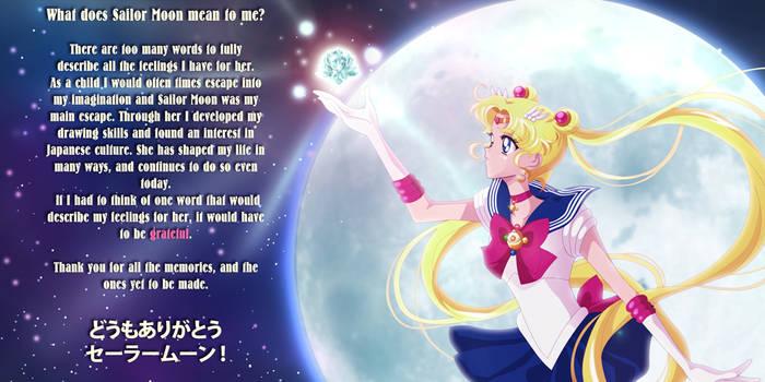 Sailor Moon Contest Entry by scpg89
