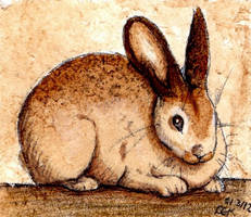 Coffee Rabbit by TheVerdantHare