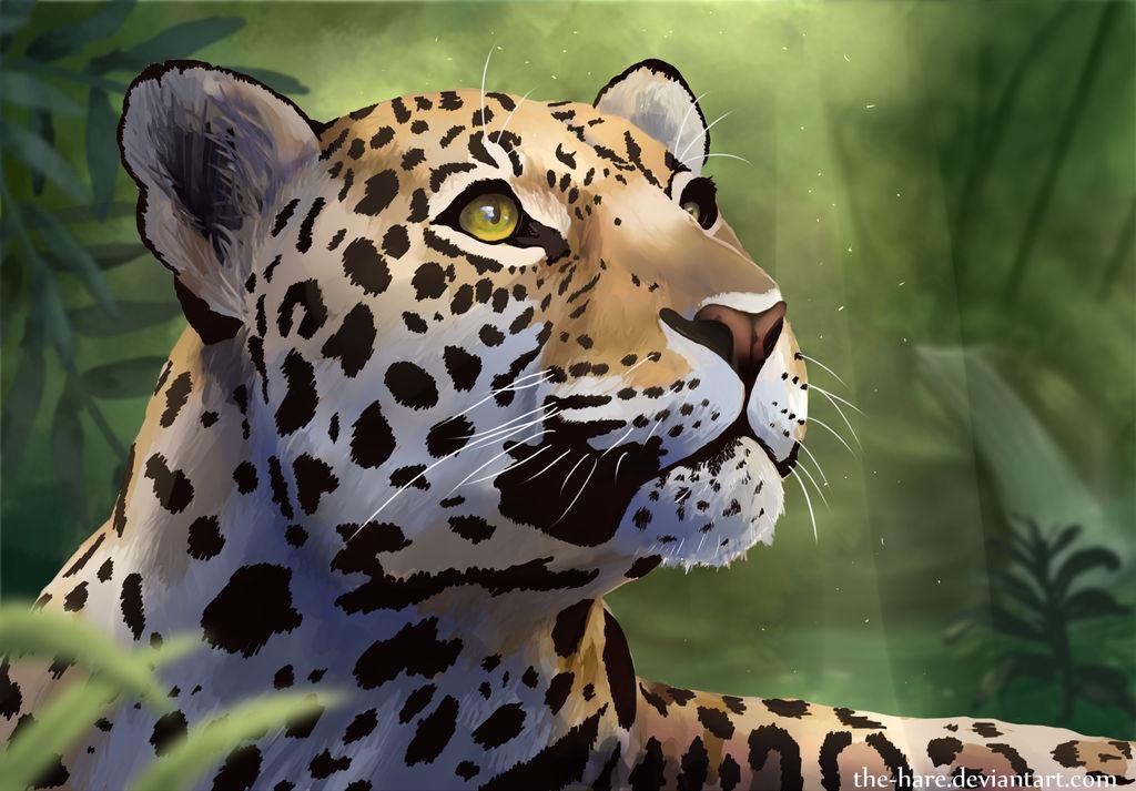 Jaguar by TheVerdantHare