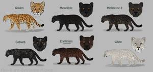 Jaguar Colour Morphs by TheVerdantHare