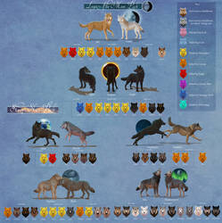 Seri's Wolf Quest  Full Family Tree