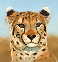 A Speedy Cheetah Paint by TheVerdantHare