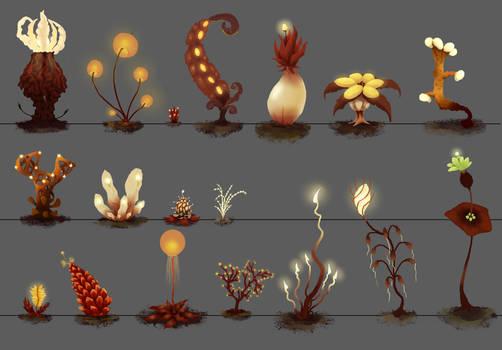 Tal-Oras Flora Concepts