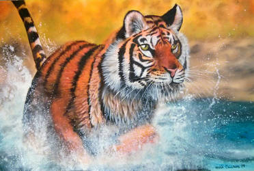 Splashing Tiger by marie-catss