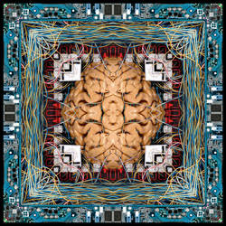 Brain Experiment by Direct2Brain
