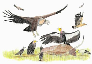 Vultures of La Brea by DiegoOA