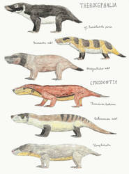 Lower Fremouw Formation: Theriodonts by DiegoOA