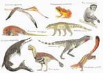 2020 in Paleontology: Volume VI