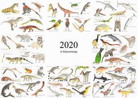 2020 in Paleontology