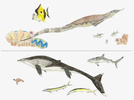 The first and last mosasaurs