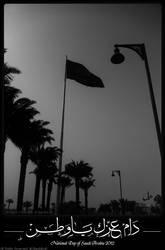 National Day of Saudi Arabia by royal2007