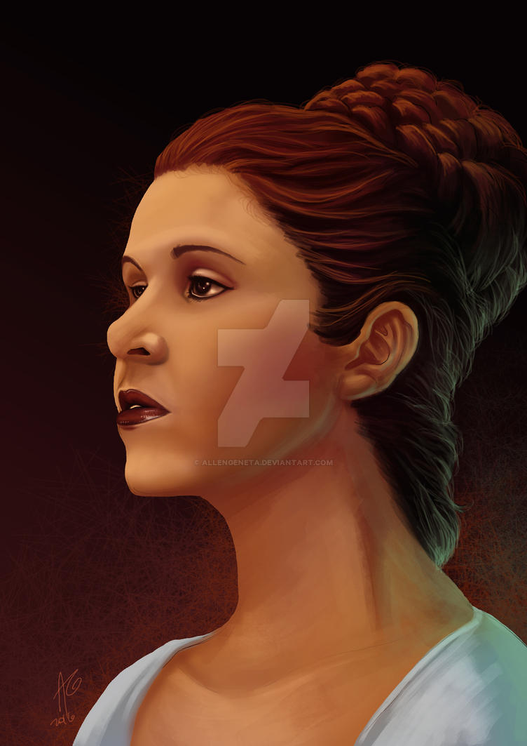 Princess Leia by allengeneta