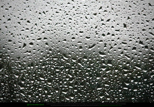 Raindrops On Window Monochrome Texture 2