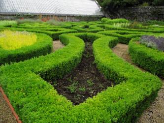 Victorian Walled Garden by D1scipl31974