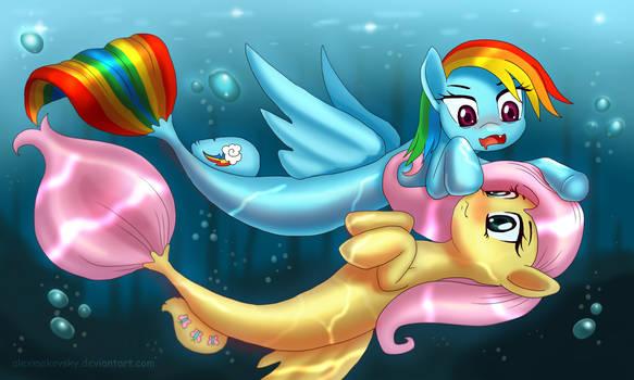 MerPonies Fluttershy n Rainbow Dash