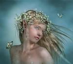 The Elven Bride