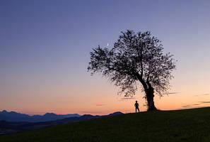 Sous l'arbre lunatique by Arafinwearcamenel