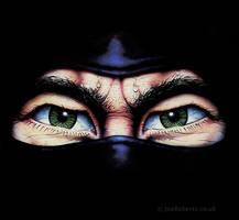 Ninja by Joe-Roberts