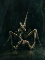 Araneae's Dance by Joe-Roberts