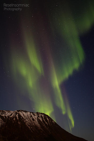 Aurora Borealis ~ a hint of purple by ReseInsomniac