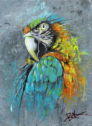 parrot abstract by puritanic