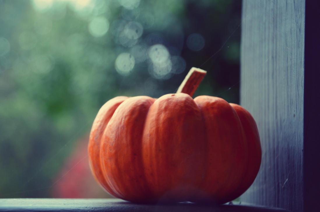 dear halloween by XxLonerEyesxX
