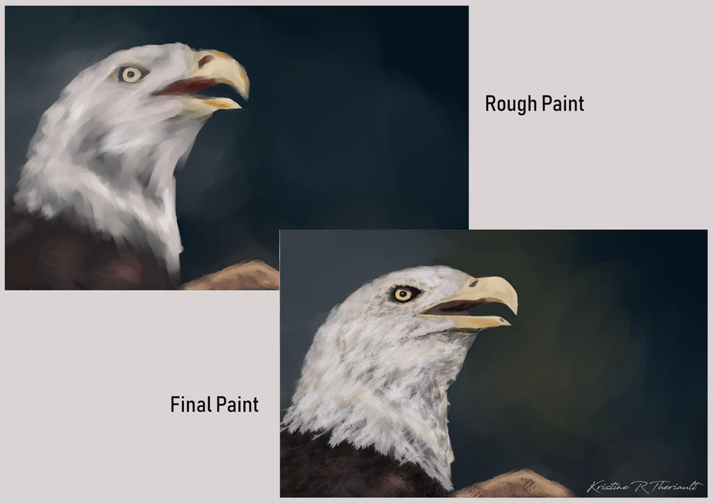 Baldeagle by krtheriault79