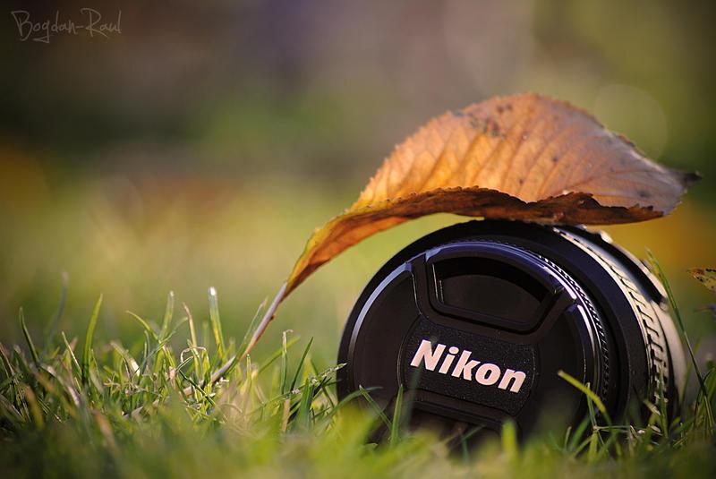 Nikon Autumn by me-inside515