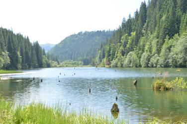 By the lake by cornelusha