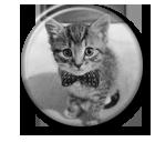 Kitty Cat Pin Button ( Spilletta) by Usagichan-odango