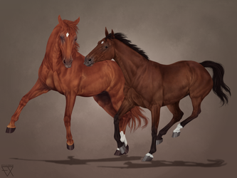 .: Commission - Stetson and Reeves :. by Fillynox