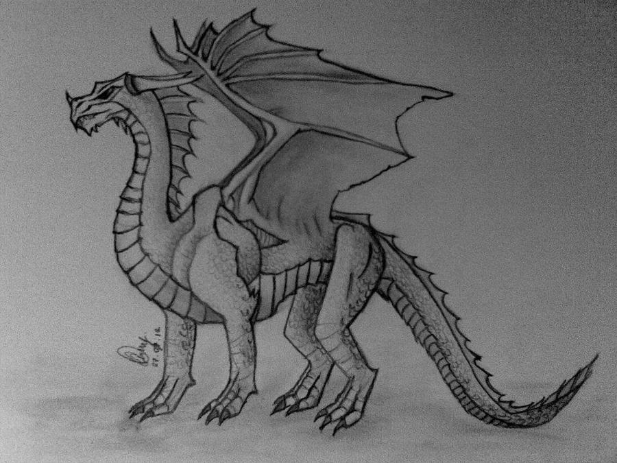 Dragon by edakyuz