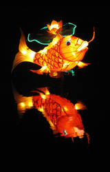 China Light Festival - Koi by Ejderha-Arts