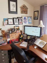 My workspace and Yuki
