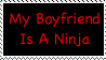 My boyfriend is a ninja by CheyenneRalphsPhotos