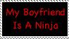 My boyfriend is a ninja by CheyenneRalphsPhotos