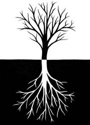 whole tree by essencestudios