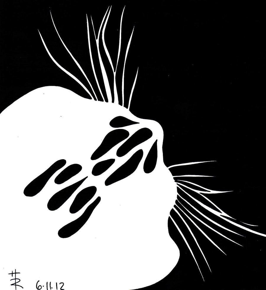 little little cat by essencestudios