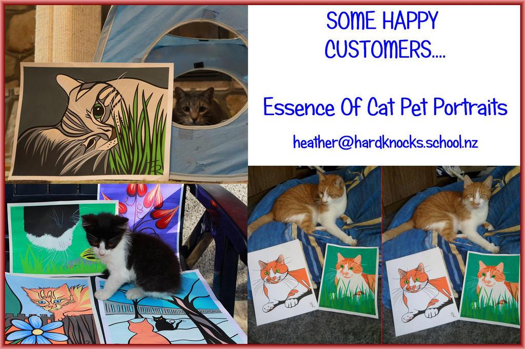 Pet Portraits by essencestudios