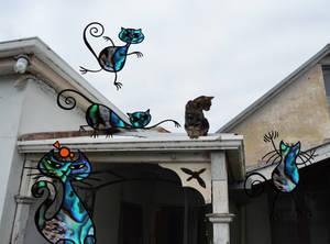 Pauashell Cats