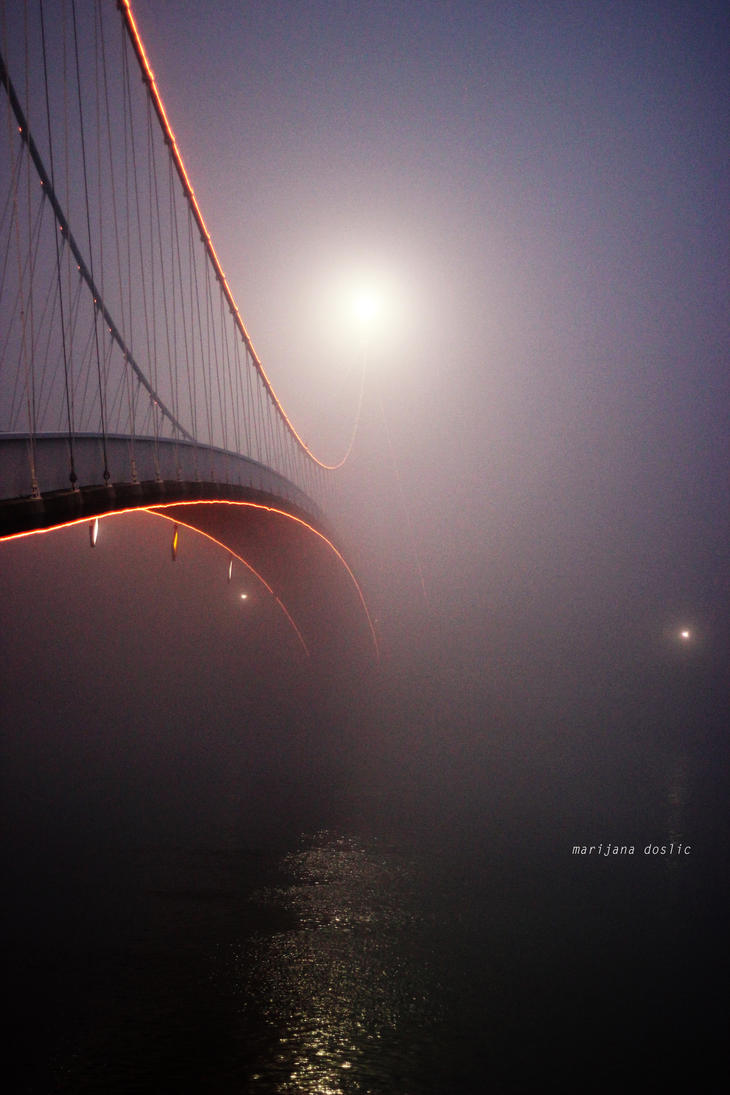 Bridge by 2cool2care