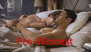 Pro Wincest by Cherry619